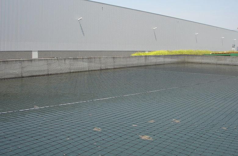 Filet bassin